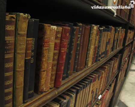 Biblioteca nacional de rio de janeiro vidasurrealista 2