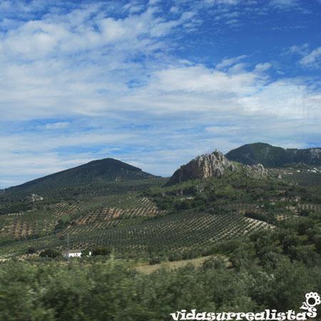 Castillos entre Cordoba y Granada 4
