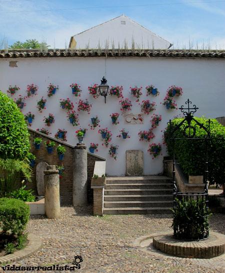 Córdoba: un hombre enamorado que regala flores