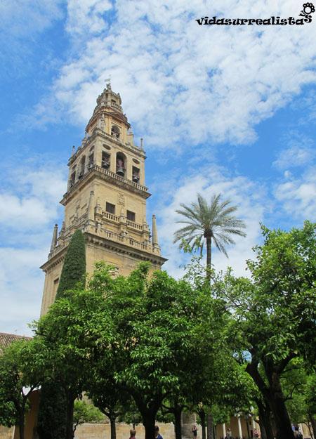 Torre Campanario vista desde el Patio de los Naranjos