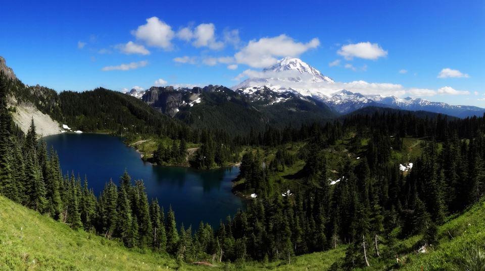 Tolmie Peak Mt Rainer vidasurrealista 2