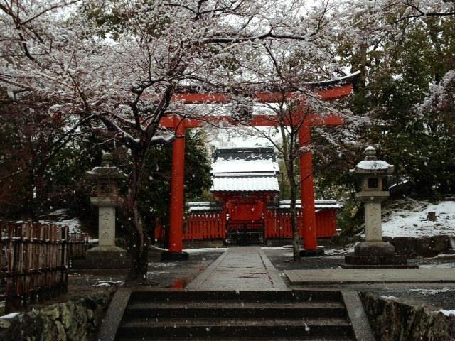 Puerta Torii, el umbral entre lo sagrado y lo mundano