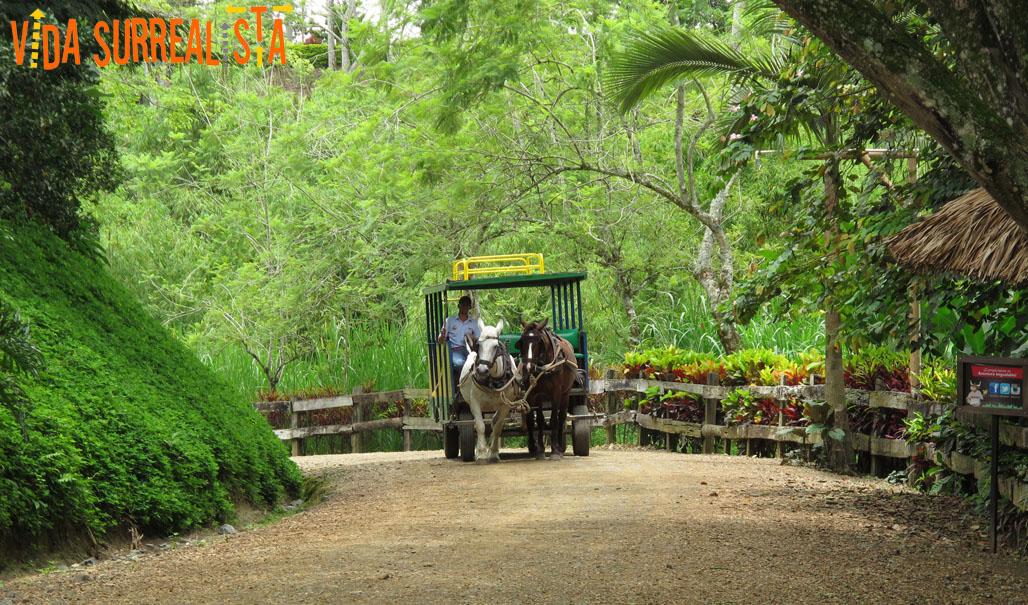 5 cosas para hacer en Colombia lejos de la playa