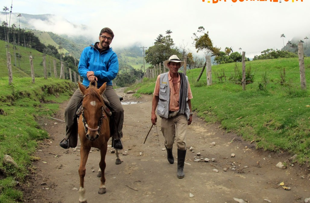 Cabalgatas para conocer las sierras cafeteras de Colombia