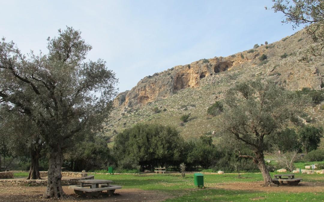 Monte Carmelo, una escapada verde cerca de Tel Aviv