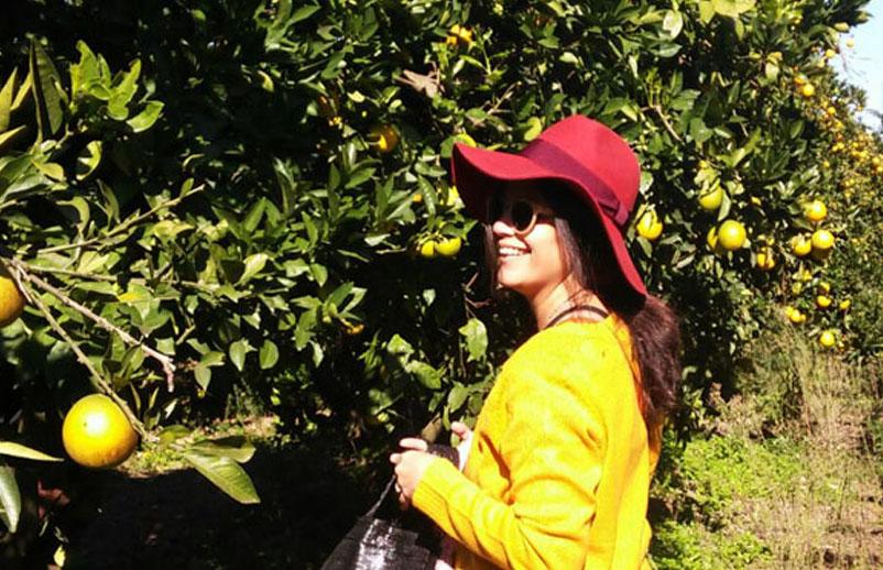 Bitan Aharon, a cosechar naranjas se ha dicho